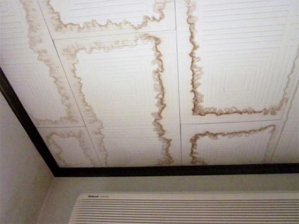 天井に雨漏り発生!応急処置と原因究明・修理依頼の仕方は?