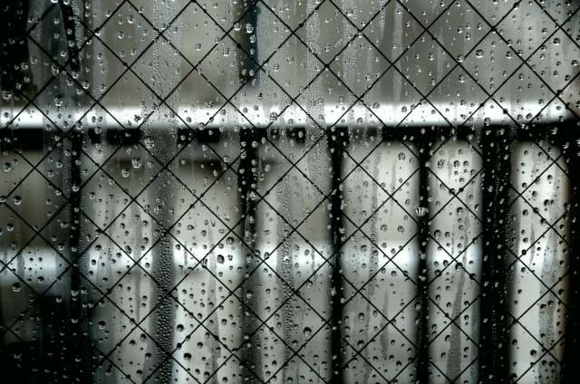 写真:雨で塗れた窓