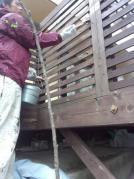 外壁リフォーム工事 ウッドデッキ塗装中